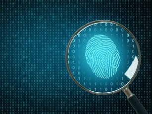 Don't DIY: Why You Should Never Attempt to Collect Digital Evidence Without Expert Assistance