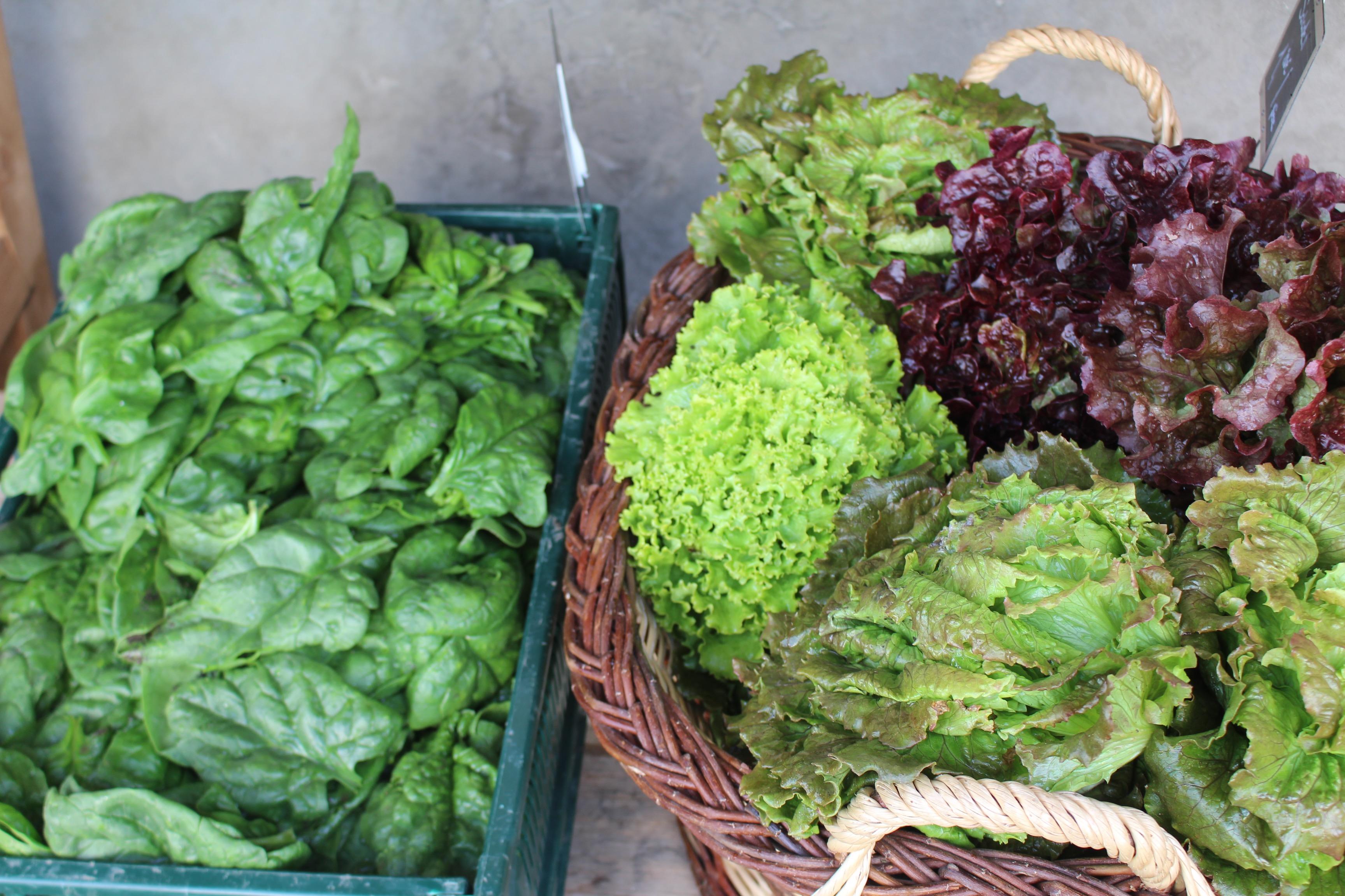 salades2 - copie