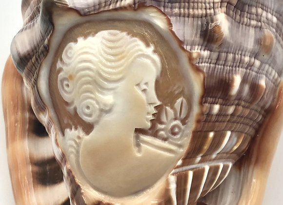 Vintage Italian Hand Carved Conch Cameo Shell