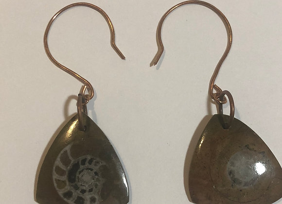 16g Ammonite Fossil Earring Weights