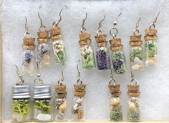 Mini Terrarium Earrings Lot of 7 Pair