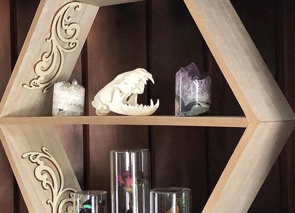 Geometric Curiosity Shelf