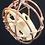 Thumbnail: Caged Muskrat Skull Hanging Art