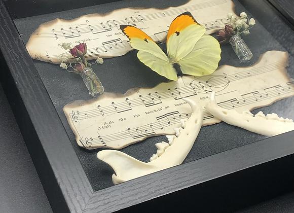 """Knocking on Heaven's Door 9""""x9"""" Framed Butterfly Art"""