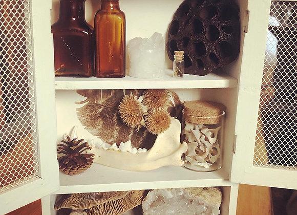 Vintage White Mini Curiosity Cabinet