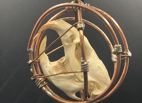 Caged Muskrat Skull Hanging Art