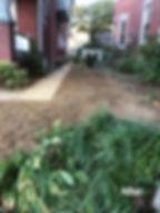 After dig_edited.jpg