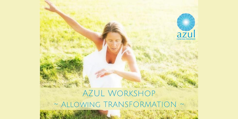 Azul Workshop ~ ALLOWING TRANSFORMATION