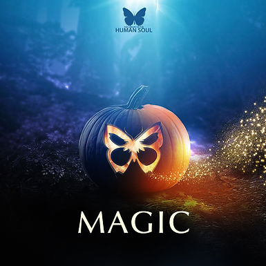 Magic - The Library of the Human Soul