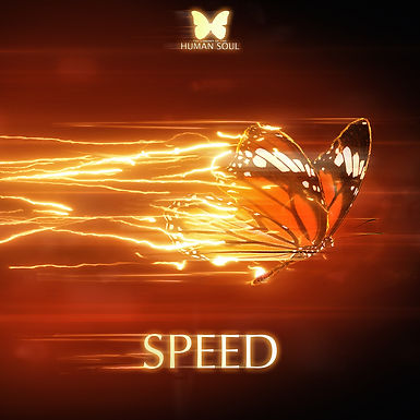 Speed - The Library of the Human Soul