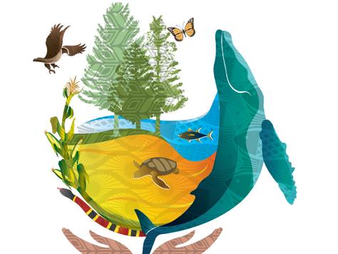 Biodiversidad, México y la COP13