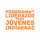 Liderazgo indigena, Dzan, SOCIE AC, premios