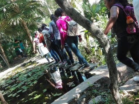 Un jardín botánico, una gran oportunidad para Dzan
