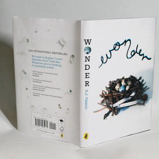 Wonder - Book Cover
