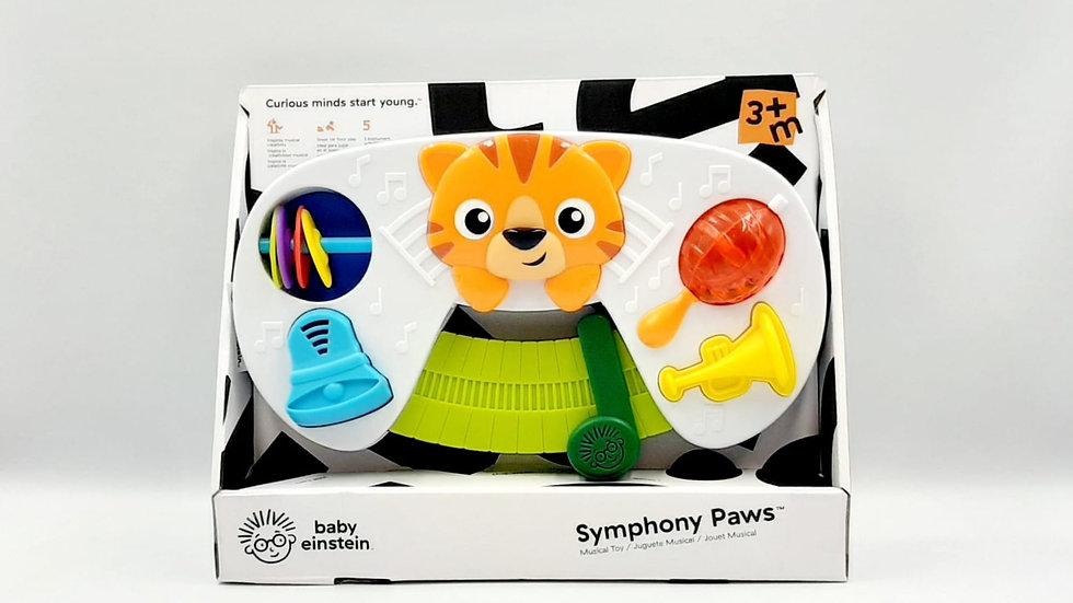 Instrumentos sensoriais Baby Einstein