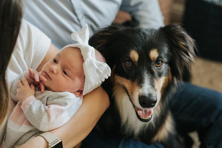 Simply-Love-Newborn-8.jpg