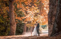 De la boda de Elena y David