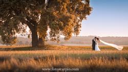 www.fotocarpio.com