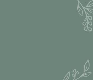 Mein Angebot_Boxen mit Blumen_BG_2.png