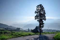 朝の小谷村