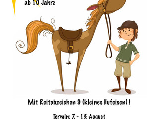 Sommerferien Lehrgang für Kinder Reitkurs & Reitabzeichen