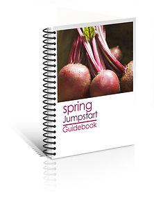 SpringJumpstartGuidebook_3Dcover_nofoote