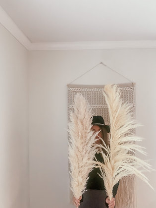 One-Sided Pampas Bundle
