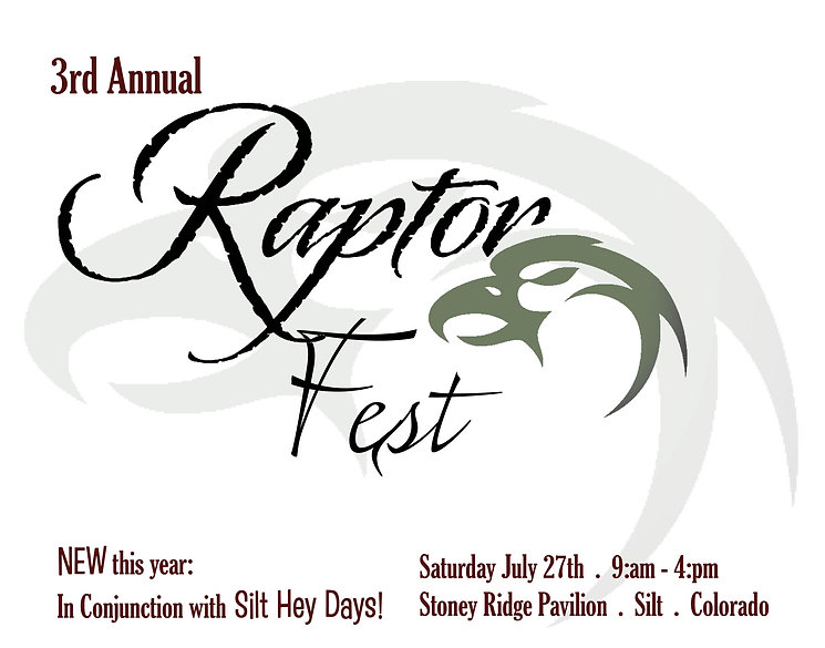 Raptor Fest design elements3.jpg