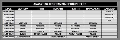 Πρόγραμμα Προπονήσεων 2016-2017