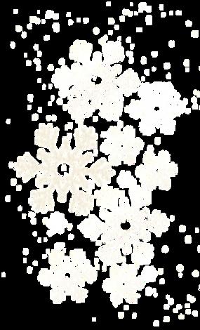 snowflakes_edited_edited_edited_edited_e