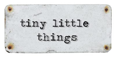 button small tiny little things w travel