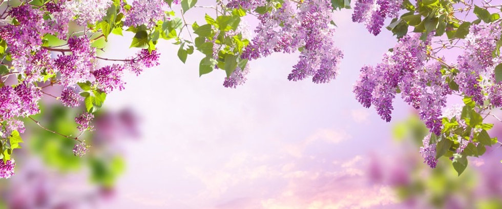 sunset and sky_edited.jpg