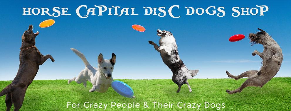 Disc_Dogs_header.jpg