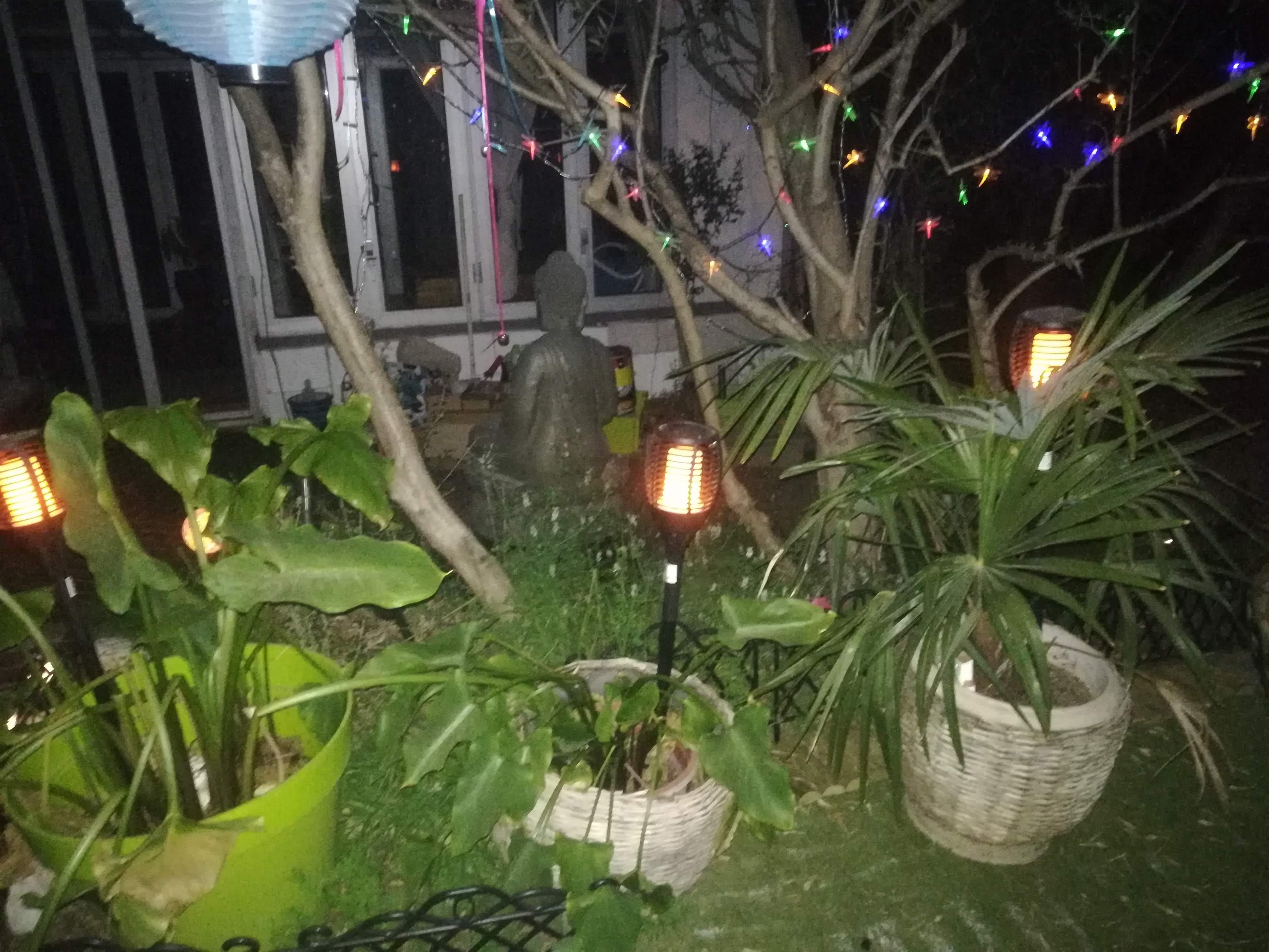 Jardin de nuit jpg