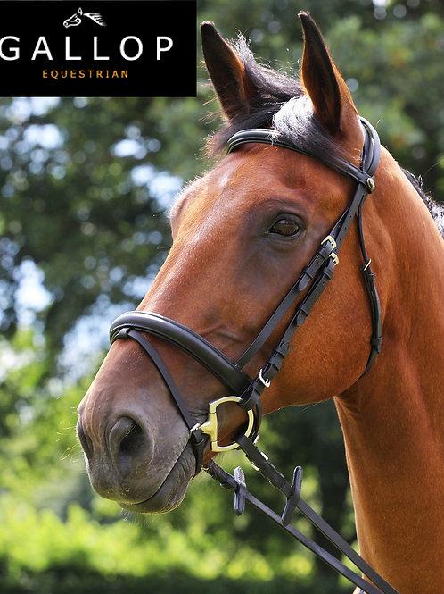 Gallop Comfort Bridle