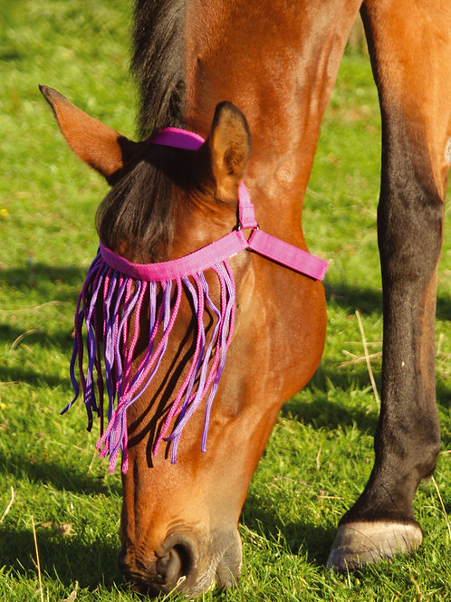 Jumpers Horse Line Fly Fringe Halter