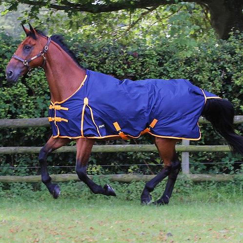Gallop Trojan 100g Turnout Rug - Nelsons Equestrian
