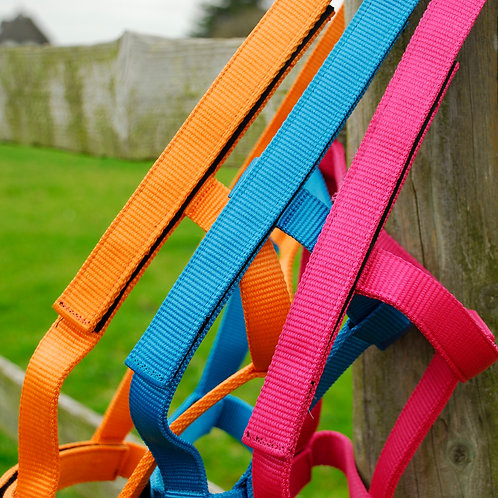 Rhinegold Fieldsafe Headcollar All Colours