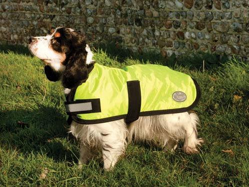 Rhinegold Waterproof Dog Coat