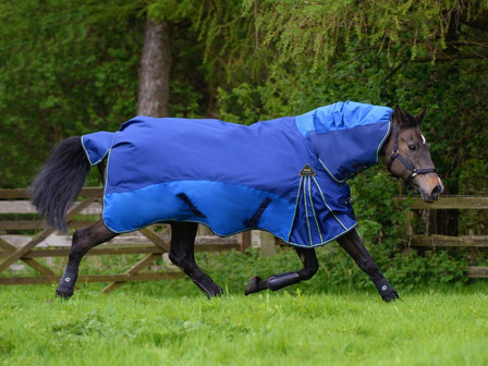 Our Guide To Buying The Best Turnout Rug For Your Horse