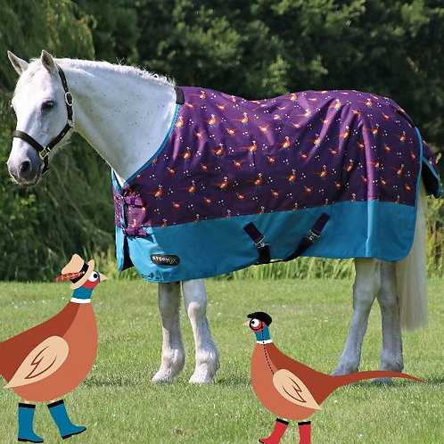 Storm X Patrick The Pheasant 100g Turnout Rug