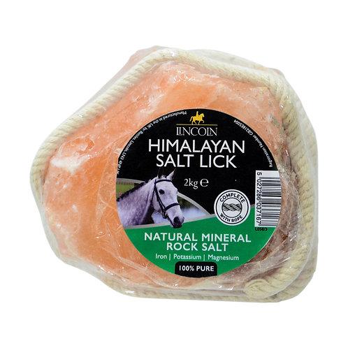 Lincoln Himalayan Salt Lick