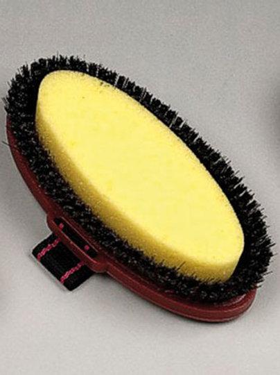 Wash brush/Sponge