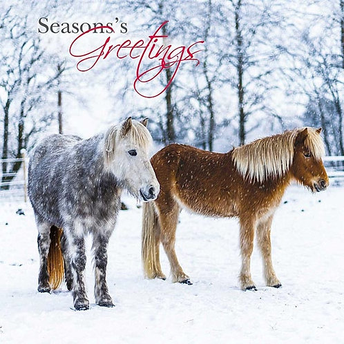 Christmas Cards Horses & Ponies - 10 Pack