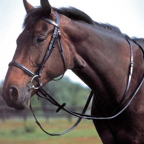 Windsor Equestrian Leather Staniding Martingale