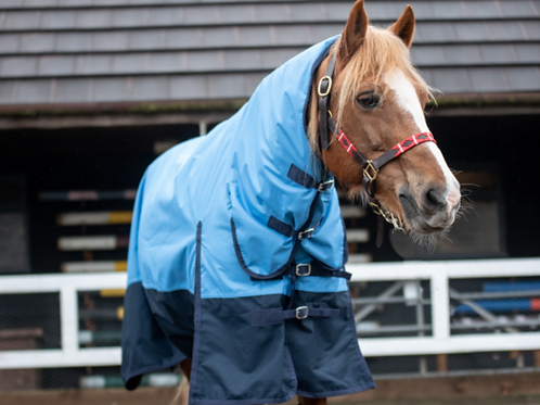 King 100g Combo Turnout Rug