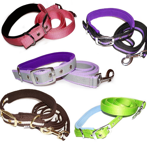 Luck Dip Padded Dog Collar & Lead