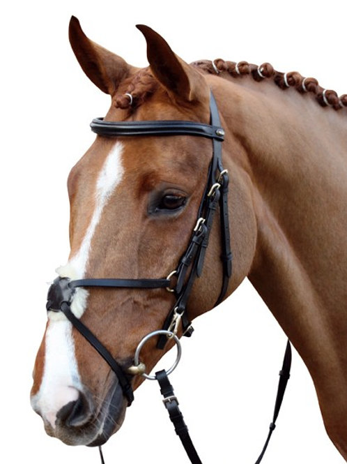HKM Mexican Grackle Bridle  www.nelsonsequestrian.co.uk