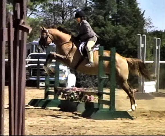 Doc Jump Show 8