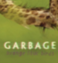 garbage-slide.png